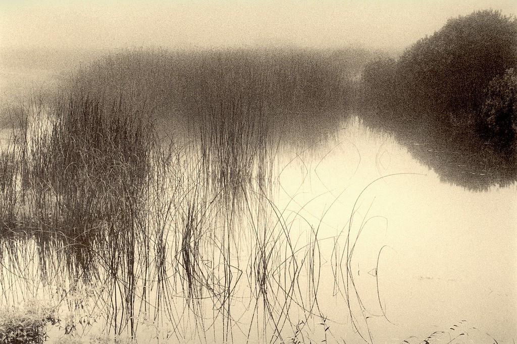 The Pond, Sea Ranch, California