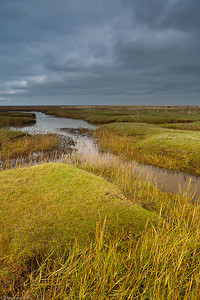 Wadden Sea National Park, North Fisia, Germany