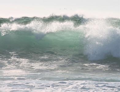 Monterey Bay Wave