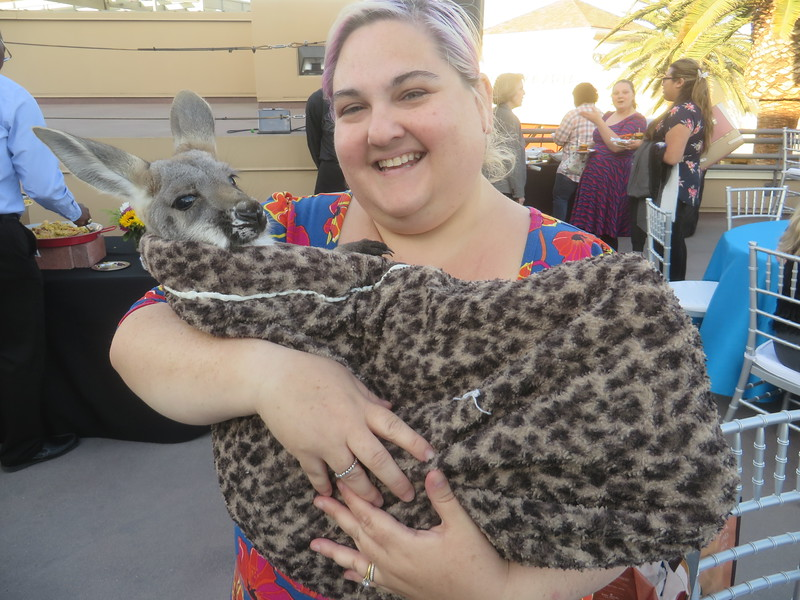 A sneak peek at Sea World's upcoming expansion, also baby kangaroo!!!
