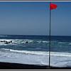 Red Flag - Heavy Seas