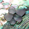 2016.72 Lavender Sea Glass on Abalone Shell