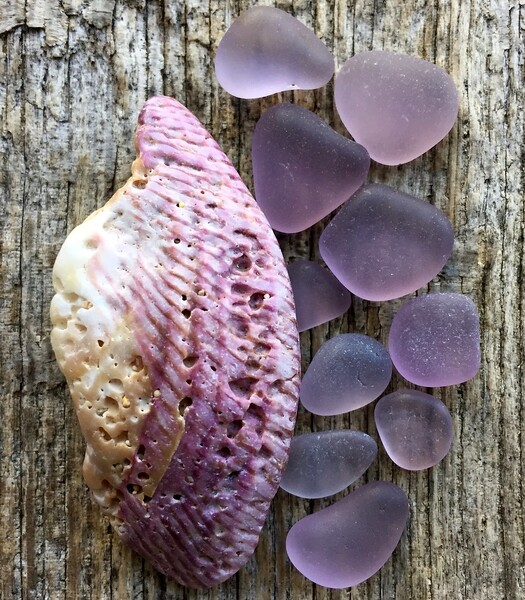 Amethyst Sea Glass and Shell