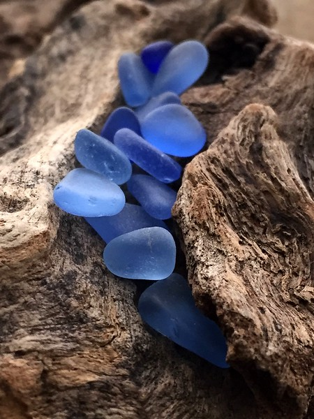 Cornflower Blue Sea Glass and Driftwood