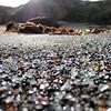 2016.38 Ft Bragg Sea Glass Beach Series 1
