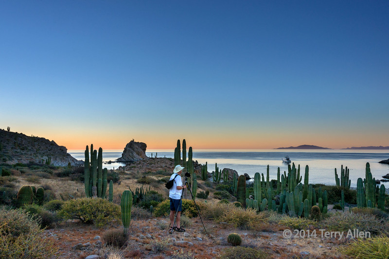 "Photographer at sunrise, Isla Catalina, Sea of Cortez, Baja, Mexico (best larger)<br /> <br /> Note re footwear:  he is wearing Keen sandals, which have a hiking boot sole and a heavy toe cap. I was also wearing the same thing, as were our companions. They are very popular with hikers, photographers, boaters, etc. in tropical marine environments.  I've worn mine all over the world in some pretty hostile (warm) environments.<br /> <br /> Isla Santa Catalina is an oceanic island, that was never attached to the Baja Peninsula and has been separated from the mainland for several million years, unlike most of the other islands in the Sea of Cortez. It is the home to a number of endemic species of reptiles (over 70% found nowhere else in the world) including a rattlesnake that has lost its rattles, because it has no predators.  It also the home to an endemic species of a large barrel cactus, which can reach up to 3 ft in diameter and up to 12 ft in height. The giant cardons here are some of the biggest around, and they are in some of the best condition anywhere.<br /> <br /> Other photos of the beautiful and unique environment of Isla Catalina can be seen here (more will be posted in the coming days): <a href=""http://goo.gl/aQgo3d"">http://goo.gl/aQgo3d</a><br /> <br /> 07/07/14  <a href=""http://www.allenfotowild.com"">http://www.allenfotowild.com</a>"