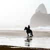 Beach Fog Rider