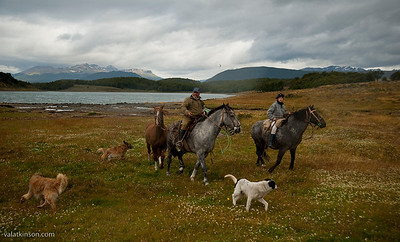 Ranches in Tierra del Fuego