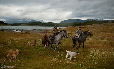 Ranches in Tierra del Fuego