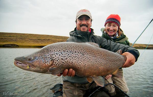 Sea-trout in Tierra-del-Fuego