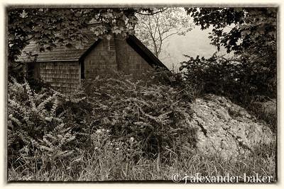 Shingle Cabin, Maine