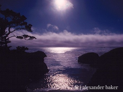 China Cove, Point Lobos, Carmel California