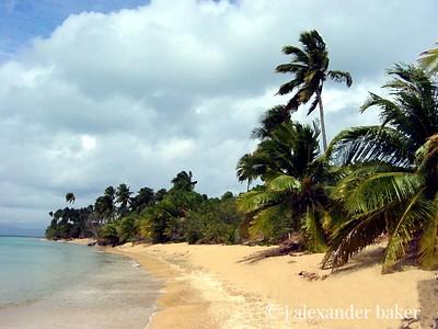 Green Beach, Viequez, PR - water color filter
