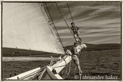 Reade to raise the foresail