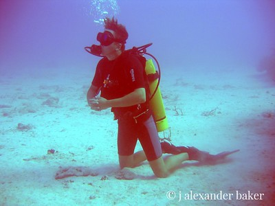 Dive Master, Vieques, PR