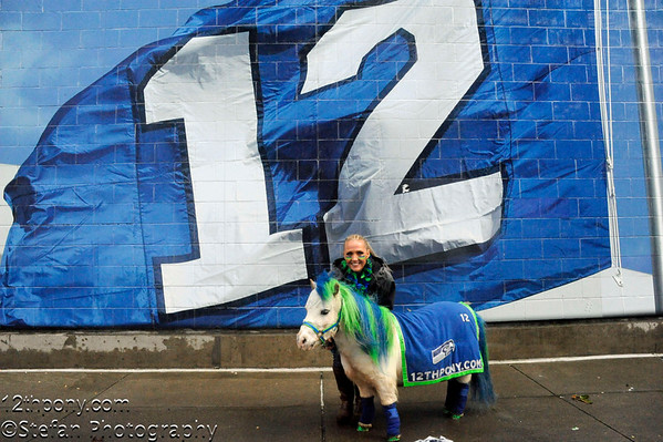 01-18-2015 Seahawks Tail Gating with Sarah & Wilson the 12th Pony