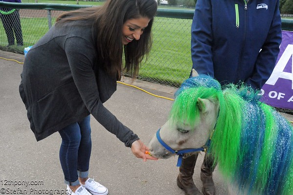 09-27-2015 Alzheimer's Walk with Wilson the 12th Pony