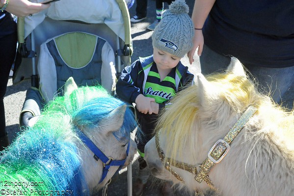 09-27-2015 Seahawks vs Bears Tailgating with Wilson the 12th Pony