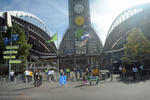 10-05-2015 Seahawks vs Lions Tailgating with Wilson the 12th Pony
