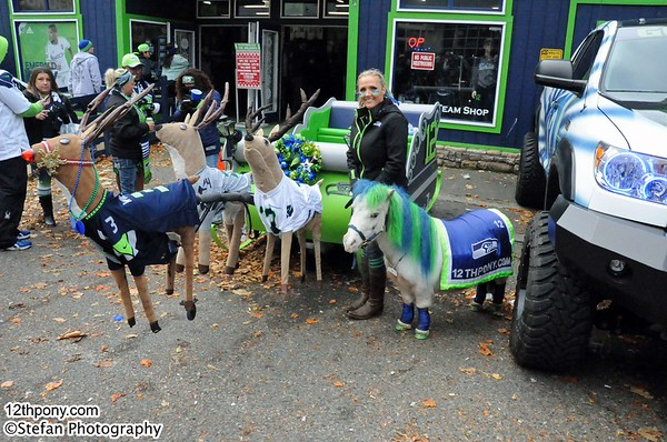 11-29-2015 Seahawks vs Steelers Tailgating with Wilson the 12th Pony