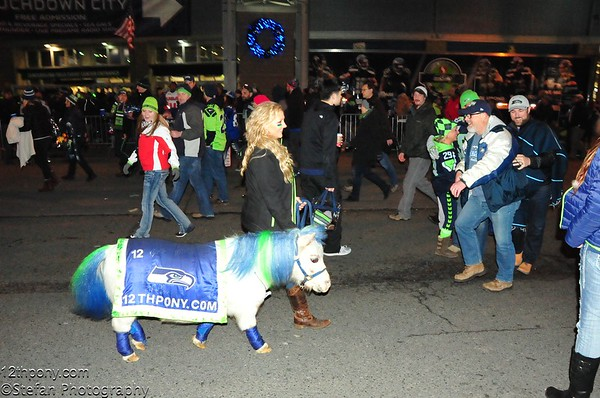 12-04-2016 Tail Gating With Wilson the 12th Pony - Seahawks vs Panthers