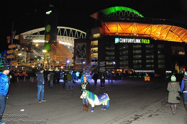 12-15-2016 Tail Gating With Wilson the 12th Pony - Seahawks vs Rams