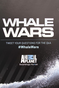 "Whale Wars Banner with tweeting directions.  Animal Planet's Whale Wars Season 4 Premier: ""Operation No Compromise"" Antarctic Campaign. Hosted by Animal Planet, L.A. Times & Brand X at the Santa Monica Pier in Santa Monica, CA. Photography by Erin Suggett for Sea Shepherd. June 3, 2011 All Rights Reserved."