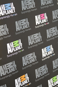 "Animal Planet Banner.  Animal Planet's Whale Wars Season 4 Premier: ""Operation No Compromise"" Antarctic Campaign. Hosted by Animal Planet, L.A. Times & Brand X at the Santa Monica Pier in Santa Monica, CA. Photography by Erin Suggett for Sea Shepherd. June 3, 2011 All Rights Reserved."