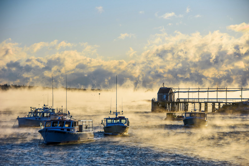 Sea Smoke - Prospect Harbor
