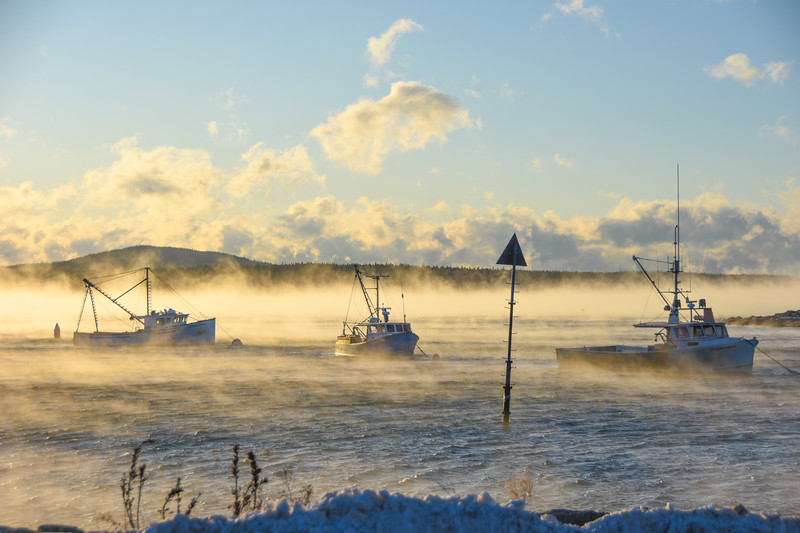 Sea Smoke - Winter Harbor