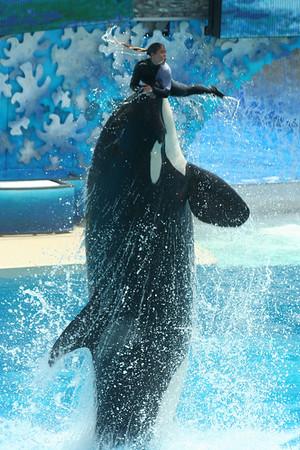 SeaWorld 5/26/06