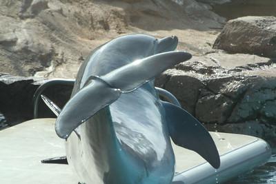 SeaWorld 9/1/06