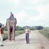 EA2 Ron Podboy and Ltjg Bruce Geibel with Work (EO Elephant Operator) Elephant