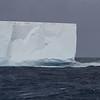 tabular iceberg off west end of South Georgia