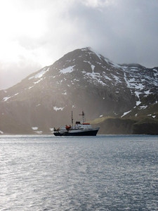 our ship, the Ushuaia, anchored at Right Whale Bay