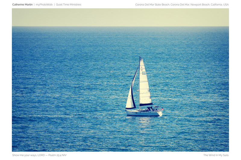 The Wind In My Sails