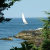 Sailing in Ogunquit Maine