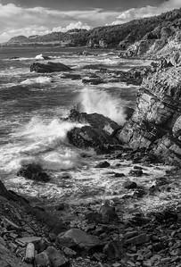 Salt Point Cove, California