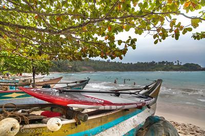 SriLanka 2014-505-2