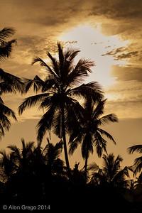 SriLanka 2014-45-2