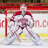 Steve Michalek (Harvard - 34) - Boston College defeated Harvard 5-1 on November 20, 2013, at the Bright-Landry Hockey Center in Cambridge, Massachusetts.