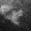 San Lorenzo Valley Rain Clouds #2