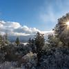 Winter Scene 2, Alba Road, Santa Cruz Mountains.
