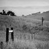Hollister Backcountry