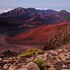 Ambient Haleakalā