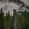 Trees, Granite, and Alpenglow