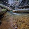 Pool at Silver Falls, Big Basin Redwoods State Park
