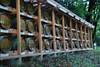 Meiji Shrine - Wine barrels of dedication from Bourgogne