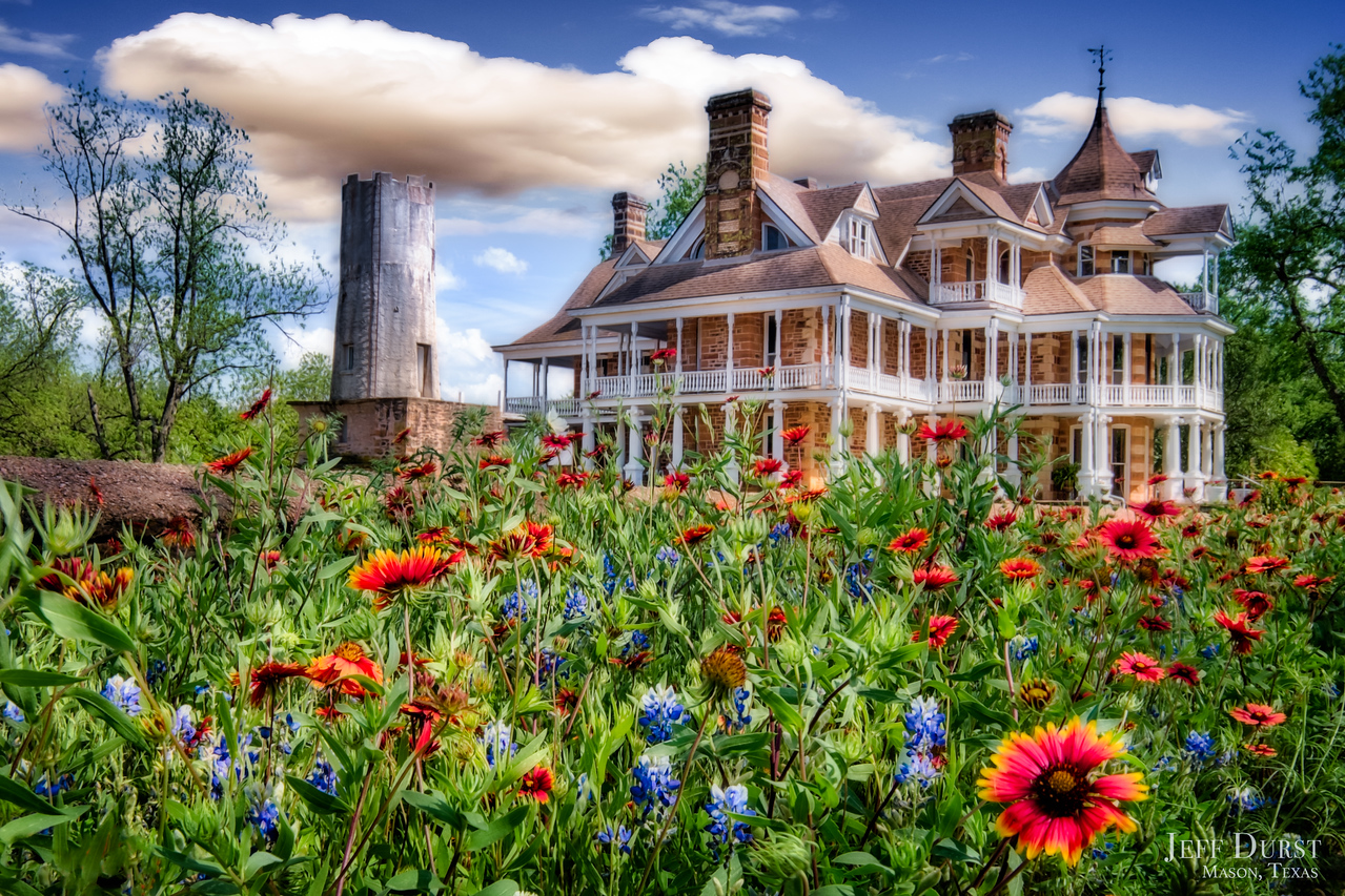 Seaquist House Wildflowers 2018