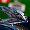 Delahaye Face Mascot